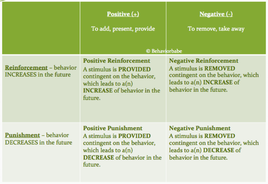 essay on positive and negative reinforcement